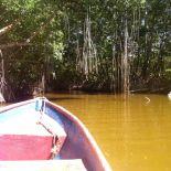 Laguna de Tacarigua
